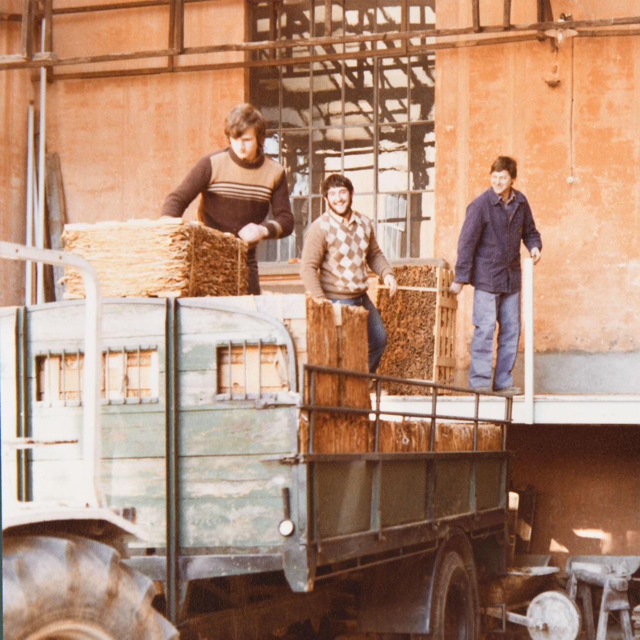 **Proseguimento lavorazione e fermentazione ** Se prima degli anni 70 era in corso la valutazione dell'introduzione della meccanizzazione della fabbricazione dei sigari, la stessa non avvenne. Al contrario, nel 1972 questa attività fu ceduta alla Fabbrica Tabacchi di Brissago e ci si concentrò esclusivamente sulla lavorazione e fermentazione dei tabacchi indigeni.